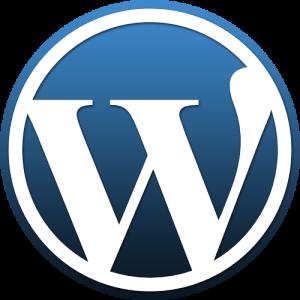 Webdesign mit WordPress aus Duisburg