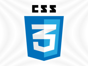 CSS3 Webdesign aus Duisburg Logo