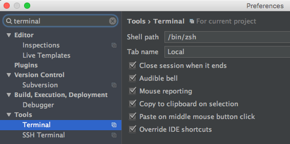 PhpStorm und oh-my-zsh terminal setting