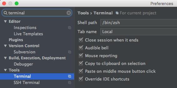 PhpStorm und oh-my-zsh terminal setting